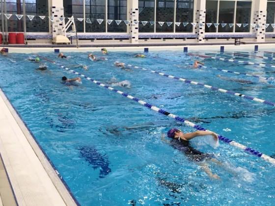 Febtrain_swim